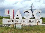 30 елей высажно в Петербурге в знак памяти катастрофы в Чернобыле