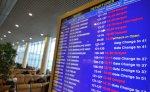 В Домодедово из-за неполадок в сортировке багажа задерживаются рейсы