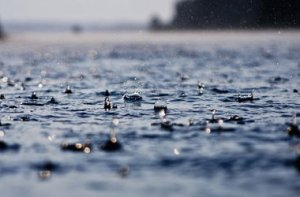 На этой неделе в Петербурге ожидаются проливные ливни и грозы