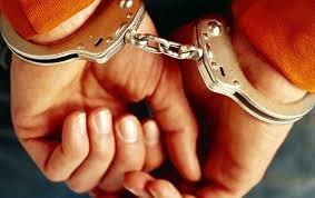 Полицейские задержали грабителя из Новодевяткино