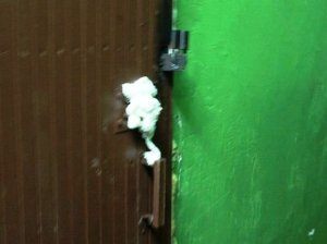 Петербургские полицейские ищут коллекторов, задувших двери квартир монтажной пеной
