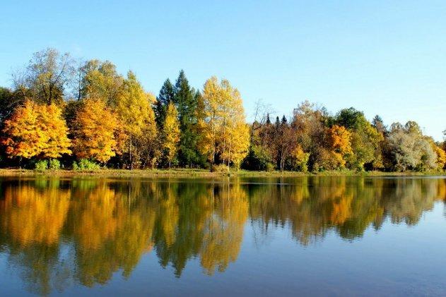 В Пушкине привели в порядок Нижний парк